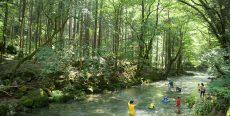 山県市で親子でキャンプ